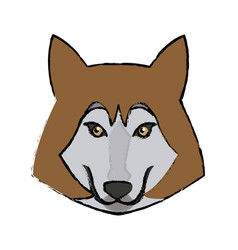 portrait of wolf husky animal wildlife image vector image