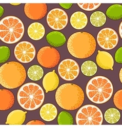 Seamless citrus vector image vector image