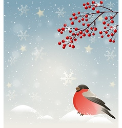 Winter landscape with bullfinch in snow vector image vector image