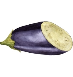 Watercolor purple eggplant vector