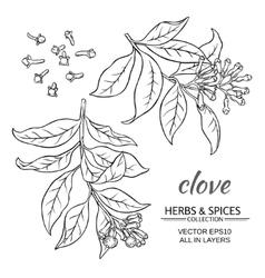 Clove set vector