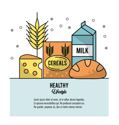 Colorful poster healthy lifestyle with set of vector