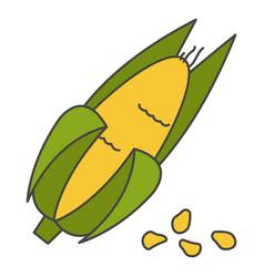 Corn cob in husk flat icon vector