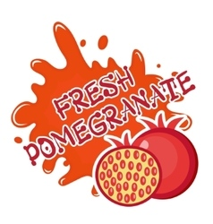 Fresh pomegranate splash icon logo sticker vector