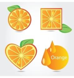 Shapes of orange fruit vector