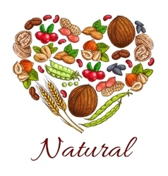 Healthy nuts grain berries in heart shape vector
