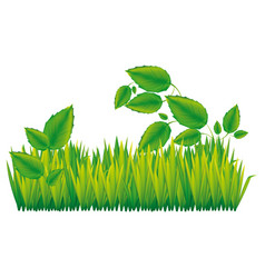 color silhouette with field grass and plants vector image