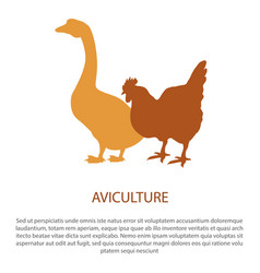 agriculture poster with silhouette of hen goose vector image