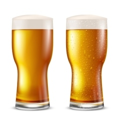 Glass beer vector