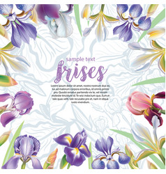 Greeting card with iris flowers vector