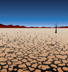 Tree in dry desert vector
