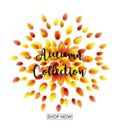 autumn leaves falling vector image vector image