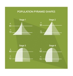 The four stage of population pyramids charts vector