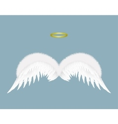 Angel wings and halo isolated on background vector