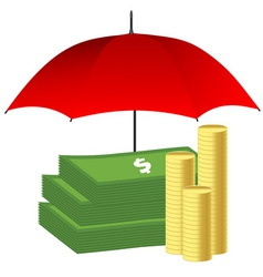 Money under red umbrella insurance concept vector