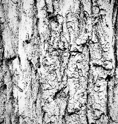 Grunge wood background vector