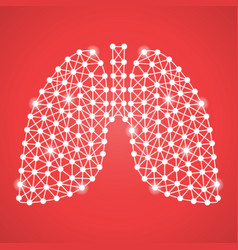 Human lungs isolated on a red background vector