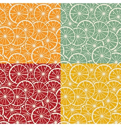 Citrus pattern collection vector image