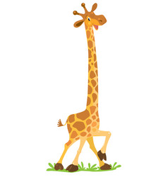 funny smiling giraffe vector image vector image