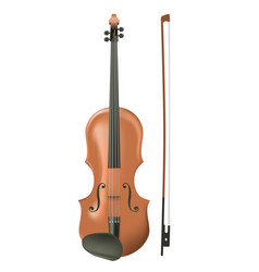 Realistic wooden violin vector
