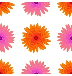 Spring Pink Orange Flowers Isolated vector image