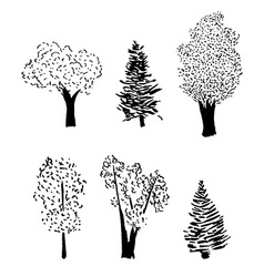 tree sketch set vector image vector image