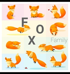 Set of fox family vector