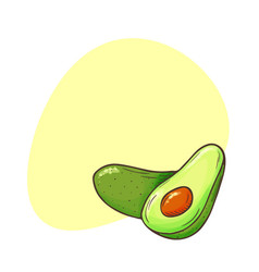 Avocado poster whole avocados sliced pieces cut vector