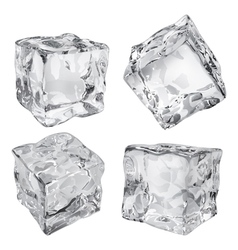 Ice cubes vector image vector image