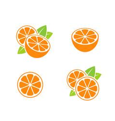 orange fruit and cut oranges vector image