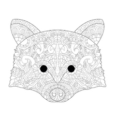 Head raccoon antistress coloring for adults vector image vector image