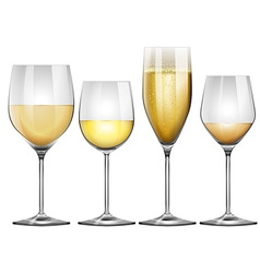 White wine in tall glasses vector
