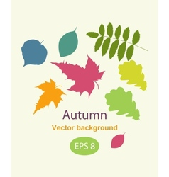 Autumnal greeting card with leave vector image vector image