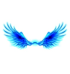 Blue fire wings vector