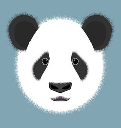 Panda isolated on color background vector