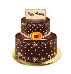 cake chocolate vector image vector image