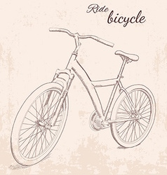 hand drawn vintage of bicycle vector image vector image