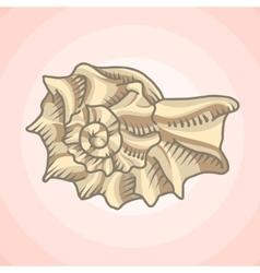 Spiral seashell vector image