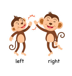 Opposite words left and right vector