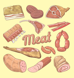 hand drawn meat doodle with pork sausages vector image