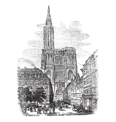 Strasbourg Cathedral vector image vector image