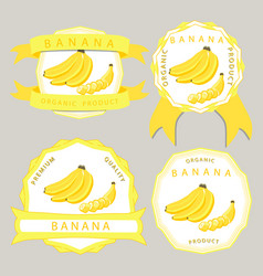 the yellow banana vector image