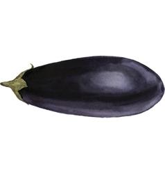 Watercolor purple eggplant vector