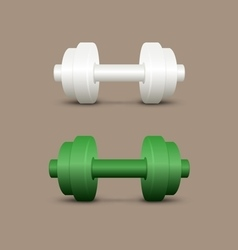 White and green dumbbells vector image vector image