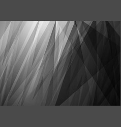 abstract white and black background design vector image vector image