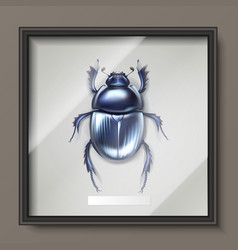 Dung beetle in frame vector