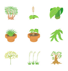 spring plants icons set cartoon style vector image vector image