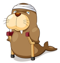 Cartoon sea lion be injured vector