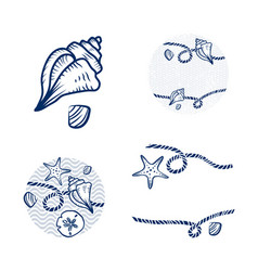 Sea shell and rope design set vector