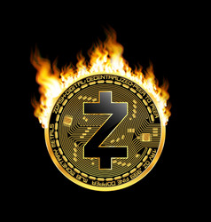 crypto currency zcash golden symbol on fire vector image